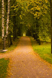 Pavlovsk Park. Fall - the best time for foot walks in the park Royalty Free Stock Photo