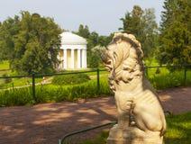Pavlovsk Skulptur av ett lejon på en bakgrund av templet av kamratskap Ryssland Fotografering för Bildbyråer