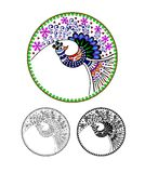 Pavo cristatus. Peacock, Peafowl, cartoon image. Black and white and color variation. Possibility to paint according to your idea. Stock Photos