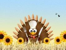 pavo para el día de la acción de gracias Imagen de archivo libre de regalías