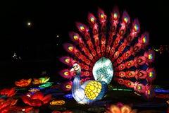 Pavo real en el festival de linterna chino fotografía de archivo