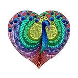 Pavo real multicolor en corazón Fotografía de archivo