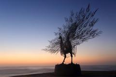 Pavo real que se coloca orgulloso - silueta Tamarama de la escultura Fotografía de archivo