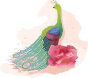 Pavone con il fiore Fotografia Stock