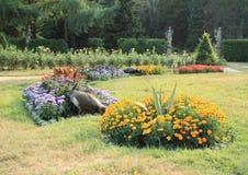 Pavone in giardino Immagine Stock