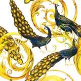 Pavone senza cuciture modello lussuoso del ricciolo dell'oro illustrazione di stock