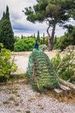 Pavos reales en el jardín en el soporte Filerimos Isla de Rodas, Grecia Imagenes de archivo