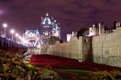 Pavots de souvenir à la tour de Londres, Angleterre Photo libre de droits