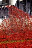 Pavots en céramique, dans le souvenir de la Première Guerre Mondiale Images libres de droits