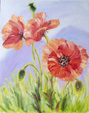 Pavots, peinture à l'huile sur la toile Images libres de droits
