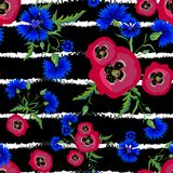 Pavots rouges et bleuets bleus Photos stock