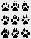Paw of dogs Royalty Free Stock Photos
