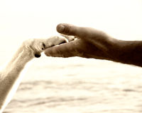 Paw in hand (18). Paw in hand, human hand and dog paw Stock Photography