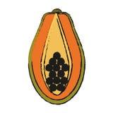 Paw paw fruit icon Stock Photography