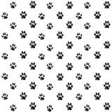 Paw Print. Print black paws on a white background Stock Photography