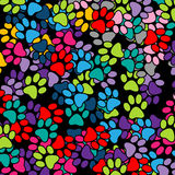 Paw Print-background Stock Images