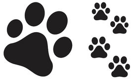 Paw print. Complete paw print set illustration with steps Stock Photos