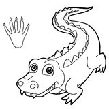 Paw print with crocodile Coloring Pages vector Stock Photography