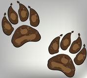 Paw print on dogs Stock Image