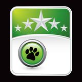 Paw print on green star background Stock Images