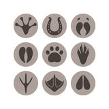 Paw print. Icon set Stock Photography