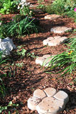 Paw Print Path concret dans le jardin Photographie stock libre de droits
