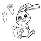 Paw print with Rabbits Coloring Pages vector Royalty Free Stock Photos