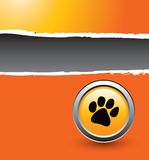 Paw print on ripped orange banner Royalty Free Stock Image