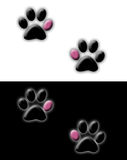 Paw Prints Stock Photos