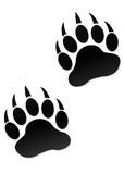 Paw prints. Illustration drawing of animal foot prints isolated on white background Stock Photography