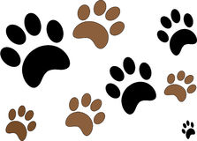 Paw Prints. Black and Brown Paw Prints on White Stock Photo