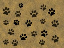 Paw prints. Background for design Stock Images