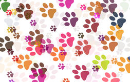 Paw Prints Royalty Free Stock Photography