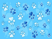 Paw prints background Stock Photos