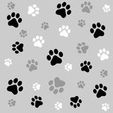 Paw Prints Background Stock Images