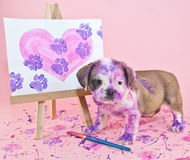 Paw Prints on Your Heart. Silly puppy that made a mess painting a picture of a heart with paw prints going through it stock images