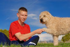 Paw shake. Teen shake his dog paw Royalty Free Stock Photos