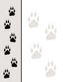 Paw Tracks Background Royalty Free Stock Photography