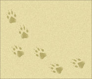 Paw Tracks in Sand. A graphic illustration of dog paw tracks across a background of sand Stock Photography