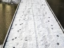 Paw Tracks On Snow. Paw tracks on the wooden footpath covered with snow Stock Image
