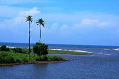 Pawas River-scape-II Stock Image