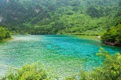 Pawi jezioro, jeden wielki jezioro w Jiuzhaigou parku narodowym Fotografia Royalty Free