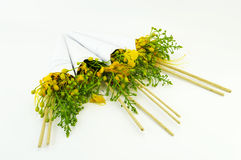 Pawi kwiaty Zdjęcie Royalty Free