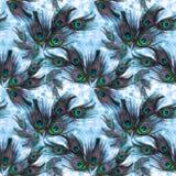 Pawi piórka na akwareli tle Bezszwowy tło Obraz Royalty Free