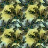 Pawi piórka na akwareli tle Bezszwowy tło Zdjęcie Royalty Free