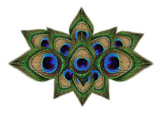 Pawi piórka na bielu Zdjęcia Royalty Free