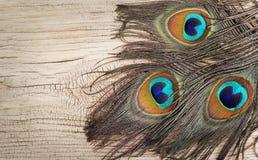 Pawi piórka na drewnianej desce Fotografia Stock