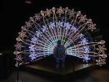 Pawia lightings dekoracja Obraz Royalty Free