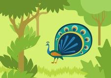 Pawiej bieżącej ogonu projekta płaskiej kreskówki dzikiego zwierzęcia wektorowy ptak ilustracji