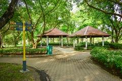 Pawilon czerwieni dach z drzewami wokoło go publicznie park Obraz Stock